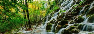 Header-Trees-with-Waterfall